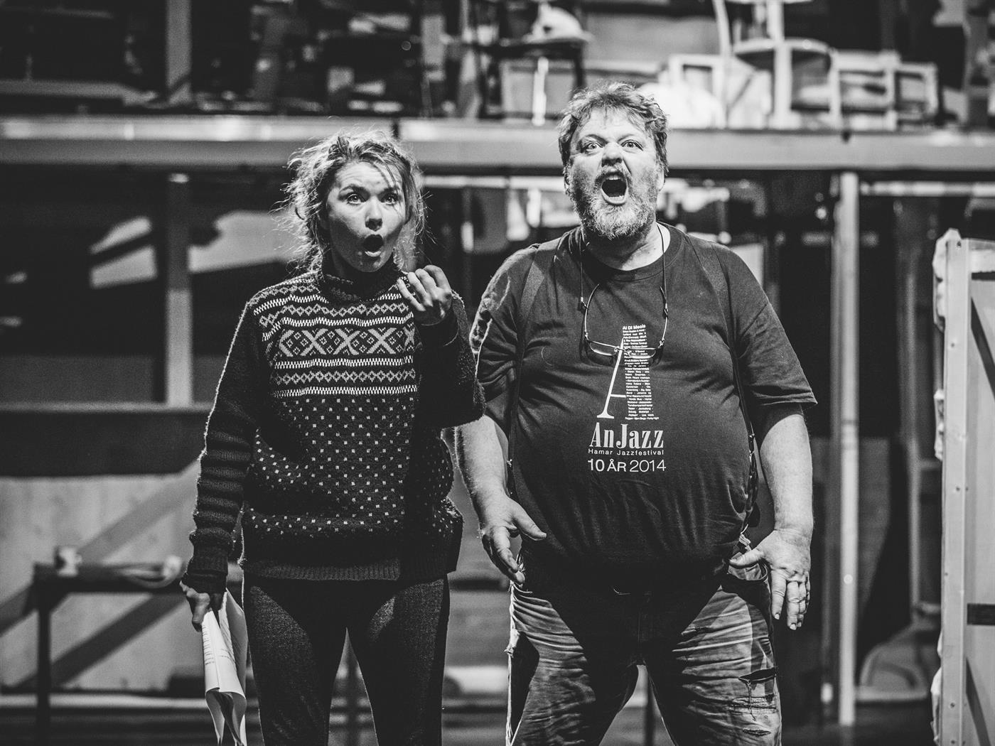 Hamar Teater - Victoriakvartalet 12
